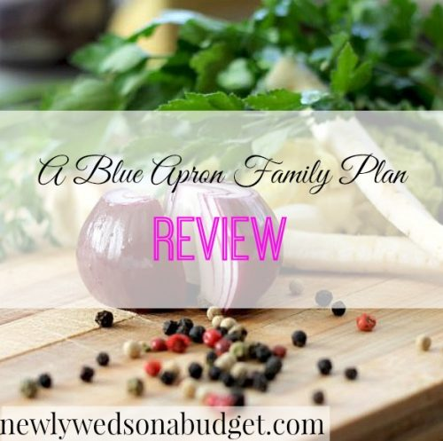 blue apron review, meal delivery service, food delivery service
